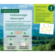 LEXA Strukturmix Kräuter - Gyógynövényes strukturmüzli