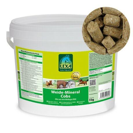 LEXA Ásványi anyag keverék legelőn tartott lovaknak 4,5 kg